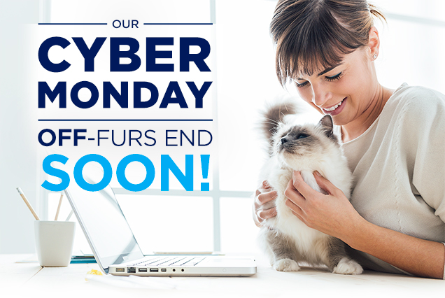 OUR CYBER MONDAY OFF-FURS END SOON!