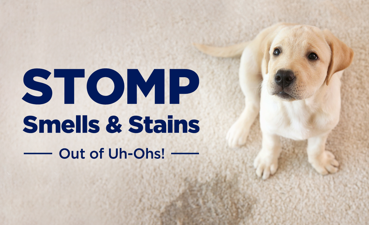 STOMP Smells & Stains Out of Uh-Ohs!
